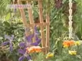 Jardinera con plantas trepadoras